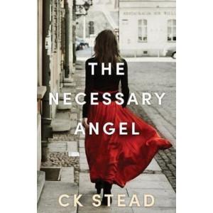 Necessary Angel