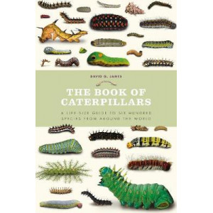 Book of Caterpillars: A life-size guide to six hundred species from around the world