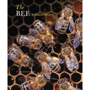 Bee: A Natural History