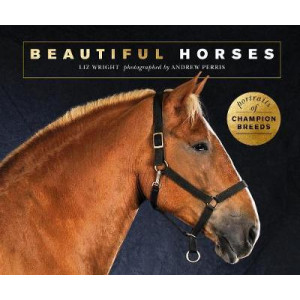 Beautiful Horses: Portraits of champion breeds