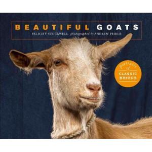 Beautiful Goats: Portraits of champion breeds