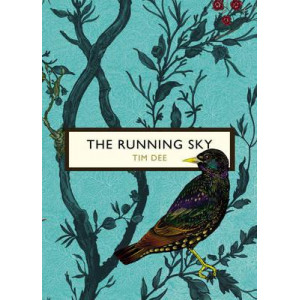 Running Sky (The Birds and the Bees): A Bird-Watching Life