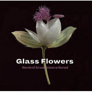 Glass Flowers: Marvels of Art and Science at Harvard