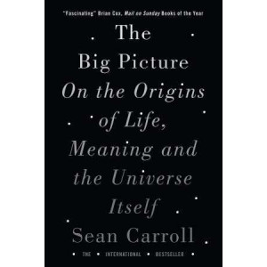Big Picture: On the Origins of Life, Meaning, and the Universe Itself
