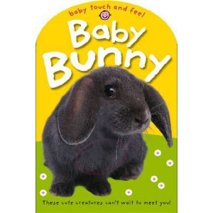 Baby Bunny : Baby Touch & Feel