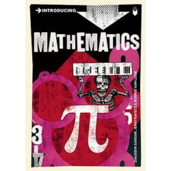 Introducing Mathematics:  Graphic Guide