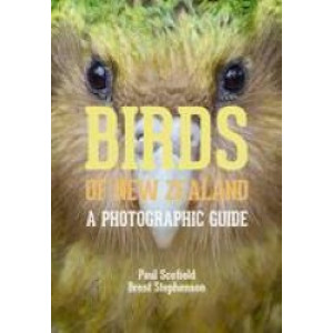 Birds of New Zealand : Photographic Guide