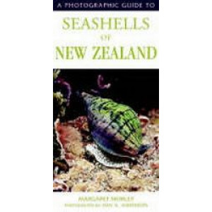 Photographic Guide to Sea Shells of New Zealand