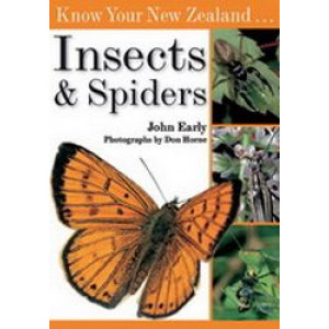 Know Your New Zealand Insects & Spiders