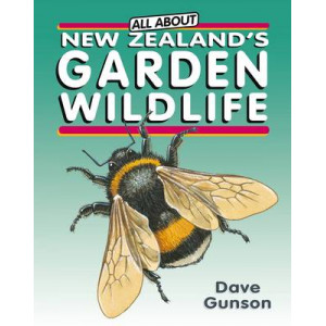 All About New Zealand's Garden Wildlife