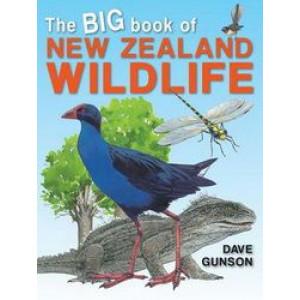 Big Book of New Zealand Wildlife