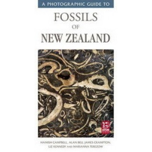 Photographic Guide to Fossils of New Zealand
