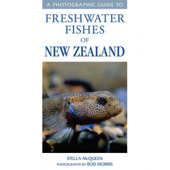 Photographic Guide to the Freshwater Fishes of NZ