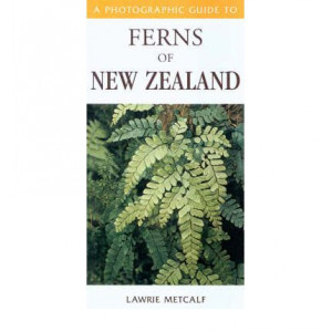 Photographic Guide to Ferns of New Zealand