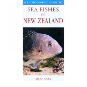 Photoguide To NZ Sea Fishes