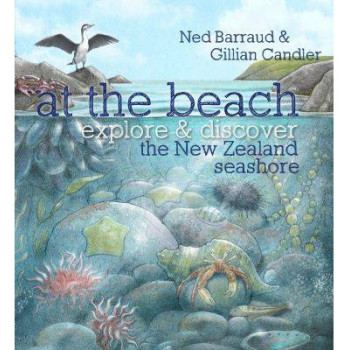 At the Beach - Hardcover