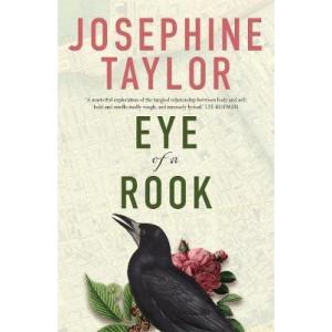 Eye of a Rook