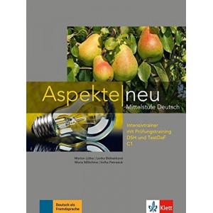 Aspekte neu C1 Grammar Book