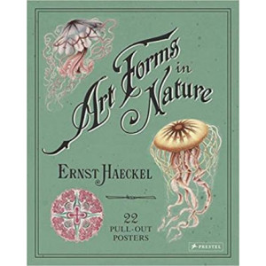 Ernst Haeckel: Art Forms in Nature