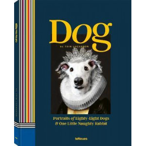 Dog: Portraits of Eighty-Eight Dogs and One Little Naughty Rabbit