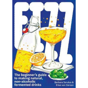 FIZZ:The Beginners Guide to Making Natural, Non-Alcoholic Ferment